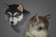 Make illustration 18 - kwork.com