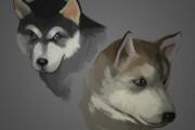 Make illustration 15 - kwork.com