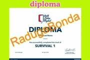 Design of the certificate, diploma, coupon 4 - kwork.com