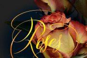 Gold modern calligraphy for invitation, banner, site, logo, instagram 8 - kwork.com