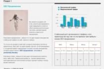 Business presentation 5 - kwork.com
