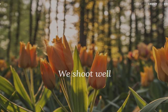 I Will Create Attractive Looking Blog Site On WordPress 6 - kwork.com