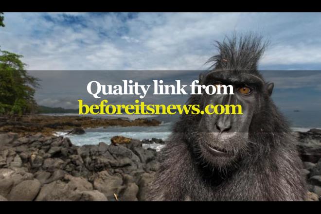 Quality link from beforeitsnews.com 1 - kwork.com