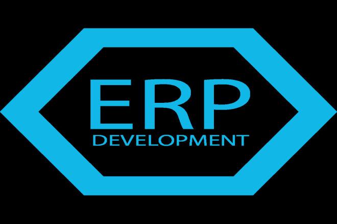 ERP software development 9 - kwork.com