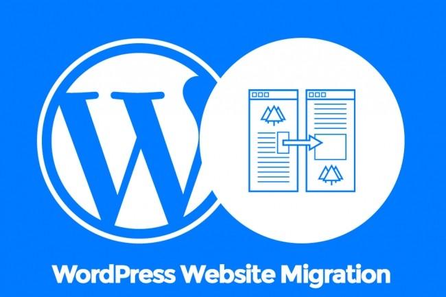 I Will Do Wordpress Website Transfer 1 - kwork.com