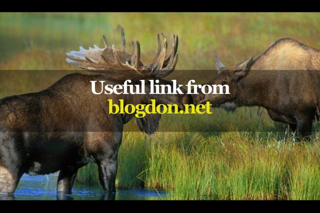 Useful link from blogdon.net 1 - kwork.com