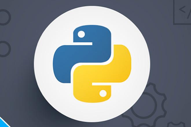 Python Script 1 - kwork.com