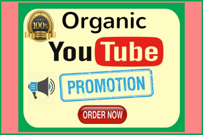 I will do Organic Youtube Video Promotion 1 - kwork.com