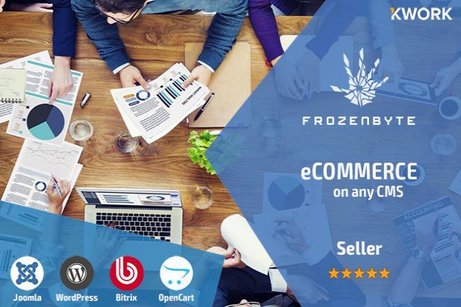 Professional development of eCommerce 4 - kwork.com