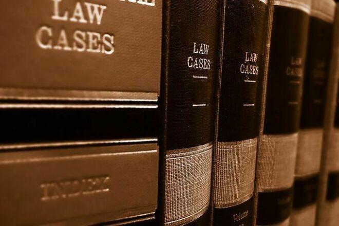 Legal consultation 1 - kwork.com