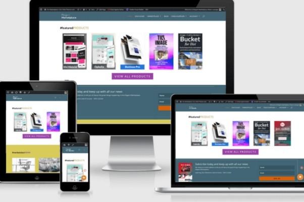 Build 5 page responsive WordPress website on a Premium Theme 3 - kwork.com