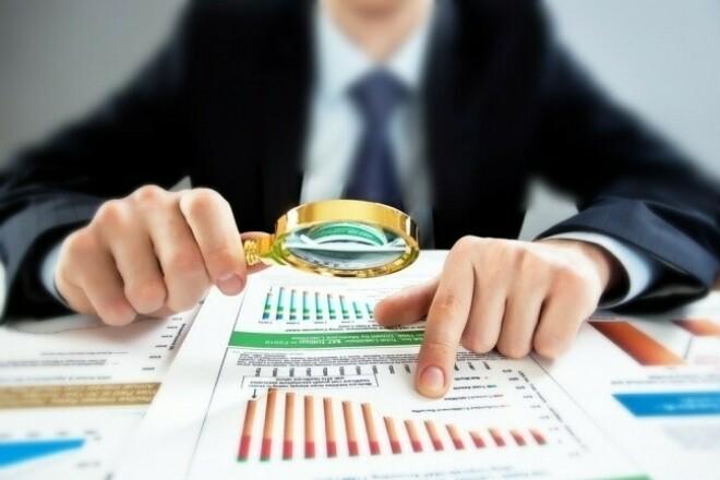 Audit of Business plan 1 - kwork.com