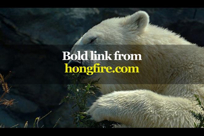 Powerful link from hongfire.com 1 - kwork.com
