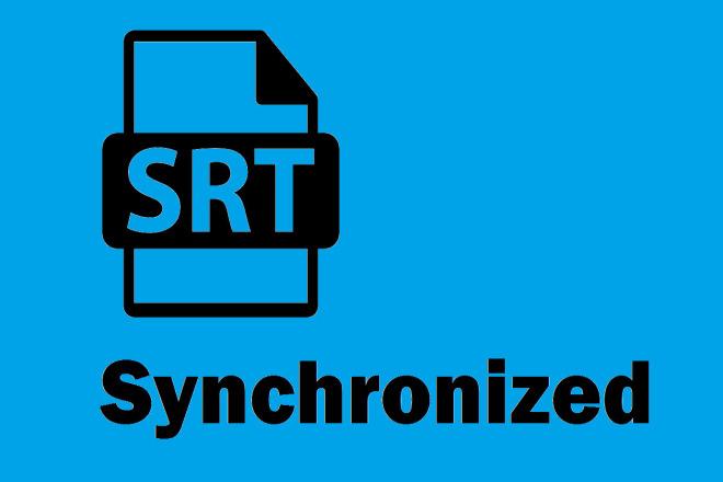 I will create Synchronized Srt File from transcript 1 - kwork.com