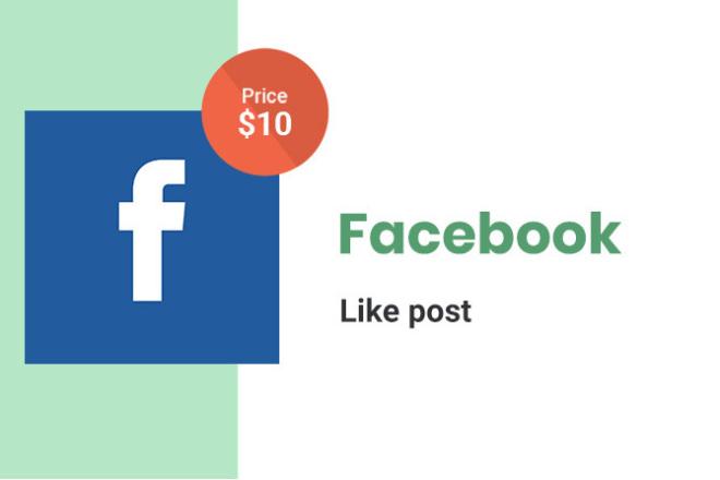 Facebook Likes Post - 3500 1 - kwork.com