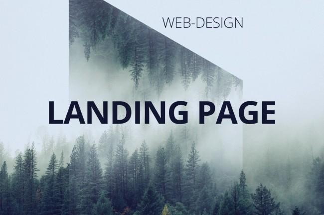 I'll do the design of the landing page 4 - kwork.com