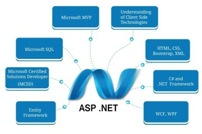 Developing an ASP. NET Website 2 - kwork.com