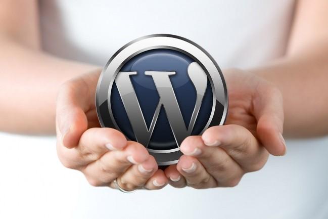 I Will Build Professional WordPress Landing 7 - kwork.com