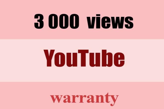 3,000 YouTube views 1 - kwork.com