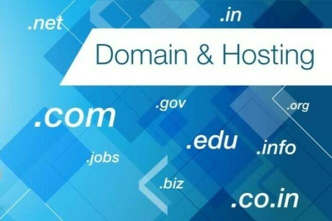 Hosting, domain registration 1 - kwork.com