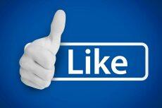 Add 1000 followers to your Instagram 8 - kwork.com