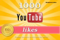 5000 followers +2000 Likes 17 - kwork.com