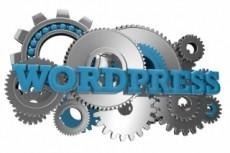 Domain & Hosting 22 - kwork.com
