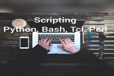 Scripting 9 - kwork.com