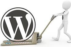 I Will Do Wordpress Website Transfer 3 - kwork.com