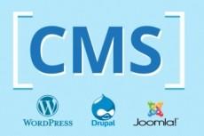 Domain & Hosting 24 - kwork.com